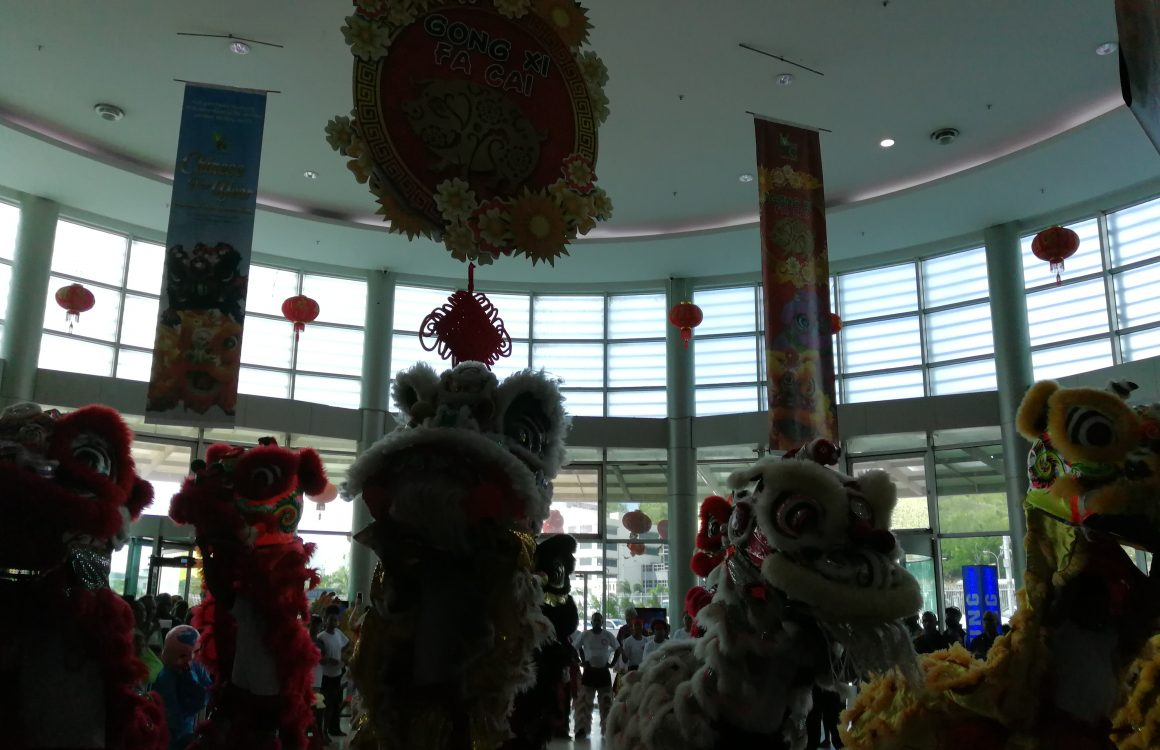 Awesome Fun and Entertainment of Welcoming Year of the Pig
